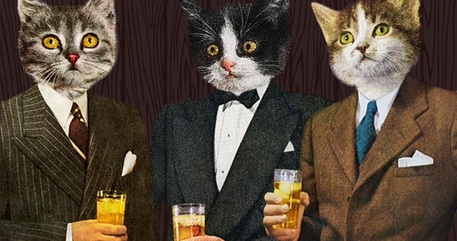 Purrrfect Gentlemen