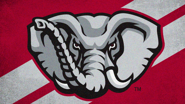The University of Alabama t-shirt design challenge